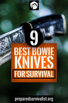 Are you looking for a good and solid bowie knife? Then you need to check out the best 9 bowie knives on the market today in this article.
