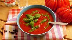 Das selbstgemachte Basilikumpesto vom Küchenchef Andreas Montag könnten wir einfach so löffeln, aber mit der Tomatensuppe schmeckt's noch besser!