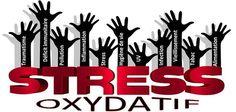 Un article intéressant sur le stress oxydant et comment lutter contre. Bon à savoir 😊