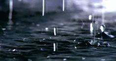 Vivenciamos conscientemente, a todo instante, os ciclos da Natureza com nossas emoções e sentimentos. Experimentamos desânimo e abatimento no transcurso de um longo período de estiagem; porém, quando a chuva cai, a nossa sensação é de alegria e prazer; ou, durante as tempestades, nossas impressões oscilam desde a apreensão até o medo.