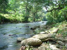 Nature by A423.deviantart.com on @DeviantArt