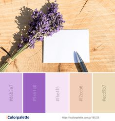 Color Palette Ideas from Lavender Purple Flower Image Colour Schemes, Color Combos, Purple Flowers, Colorful Flowers, Lavendar Painting, Color Mixing Chart, Paint Combinations, Purple Color Palettes, Lavender Color