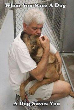 RESCUED: shortly before dog was to be euthanized.... - chacun devrait le faire au moins ue fois dans sa vie...
