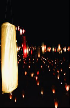 Complete guide to the Festival of Lights (The Lai Hua Fai), Laos Festival Lights, Ecommerce Hosting, Laos