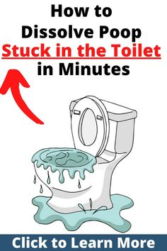 Here are 6 simple DIY tips to dissolve poop stuck in the toilet worthy knowing that will save you money. #howtodissolvepoopstuckintoilet #cloggedtoilet #cloggedtoiletdiy #cloggedtoiletcleaning Toilet Drain, Clogged Toilet, Toilet Cleaning, Cleaning Hacks, Local Plumbers, Simple Diy, Remedies, Money, Humor