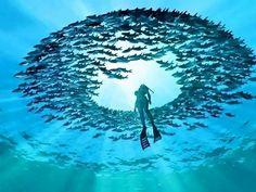ocean by Alexander  on 500px