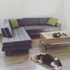 Eliot Sectional with Bumper - Photo by 45oclock