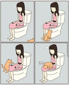 Cats Are Affectionate in the Bathroom by Cat vs Human.