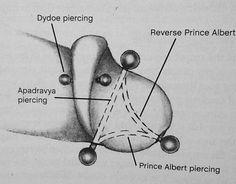 Girls virginas pierced, claudia antonelli hot