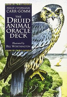 Druid Animal Oracle Deck by Philip Carr-Gomm http://www.amazon.com/dp/1859061729/ref=cm_sw_r_pi_dp_lSgCvb1SZZA3V