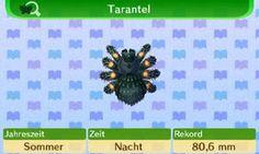 Juni - Animal Crossing: New Leaf