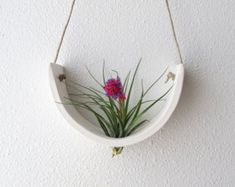 Hanging Tillandsia Cradle ™ – natural white faience planter vase - All For Herbs And Plants Earthenware Clay, Ceramic Clay, Ceramic Pottery, Hanging Air Plants, Hanging Planters, Vase, Cerámica Ideas, Air Plants Care, Ceramic Studio