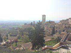 Assisi (2015)