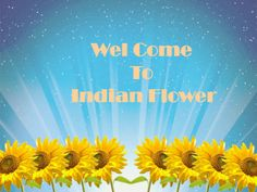 Indian Flowers are manufacturer, exporter and wholesale supplier of artificial flower and flowers. We provide artificial flower for festival, artificial flower bouquet.