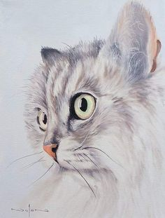 In this class you will paint a cat portrait.  During the class you will learn:  1) a subtle way to use opposites colours to add vibrancy to your painting 2) How to paint hair without having to paint every last hair 3) How to paint eyes that look glossy 4) How to paint whiskers