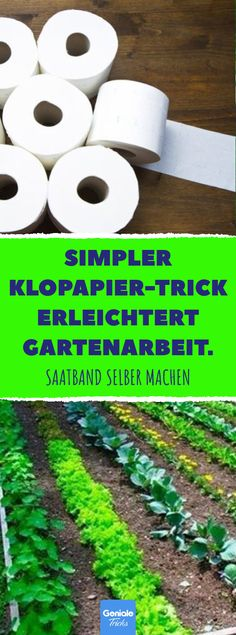 For the vegetable patch: Make seed tape from toilet paper yourself. For the vegetable patch: Make seed tape from toilet paper yourself. Seed Tape, Japanese Garden Design, Tricks, Toilet Paper, Gardening Tips, Vegetable Gardening, Mother Nature, Catering, About Me Blog
