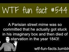 Facts about weird, intersting weird information WTF Facts : funny, interesting & weird facts Wierd Facts, Weird But True, Wow Facts, Wtf Fun Facts, True Facts, Funny Facts, Funny Quotes, Random Facts, Crazy Facts