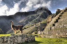 Machu Picchu Ciudad de Encantos.......2012