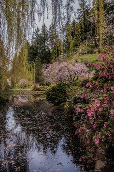Butchart Gardens & Spring  ©Yasmin Simpson