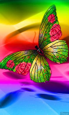 Animation Beautiful multi-colored butterfly on a bright colored background, Acbka, SIFCO Beautiful multi-colored butterfly on a bright colored background, Acbka Sunset Wallpaper, Butterfly Wallpaper, Wallpaper Backgrounds, Wallpapers, Hello Kitty Iphone Wallpaper, Cellphone Wallpaper, Beautiful Bugs, Beautiful Butterflies, Green Butterfly