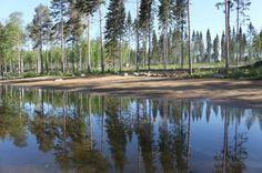 Cottage holiday at Punkaharju Resort. Punkaharju, Finland.