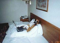 The Blog Dog