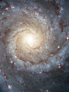 This image of the Whirlpool galaxy shows the classic features of a spiral galaxy: curving outer arms where newborn stars reside and a yellowish central core, home to older stars. A companion galaxy called NGC 5195, seen here at the tip of one of Whirlpool's arms (right), has been passing by for hundreds of millions of years and exerting gravitational forces on its larger neighbor.