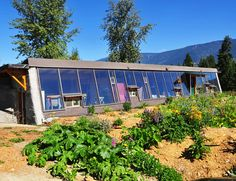 BC's First Earthship is Still Standing Strong, and Growing Ever Greener   Inhabitat - Sustainable Design Innovation, Eco Architecture, Green Building