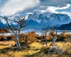 Патагония – это как будто другой мир. (Patagonia, Argentina)