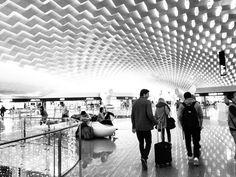 Heimreise von Shenzhen