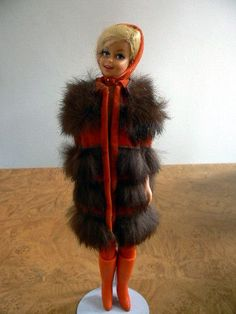 Vintage Casey in Sears Exclusive Furry Go Round 1967