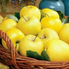 Golden delicious apples. My favorite!