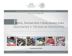 Perfil, parámetros e indicadores para docentes y técnicos docentes.
