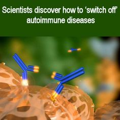 Medical Laboratory and Biomedical Science: Scientists discover how to switch off autoimmune diseases