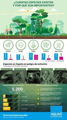 45 Ideas De Biodiversidad En 2021 Ecosistemas Especies Libros