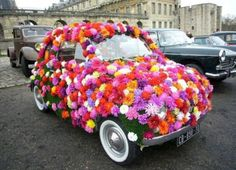 www.romeoauto.it #formula1 #motors #concessionaria #passion #automobili #fiat #flower #fiat500 #500 #fiori