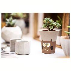 Concrete Crafts, Concrete Projects, Concrete Planters, Painted Flower Pots, Painted Pots, Cute Paintings, Fabric Stamping, Potted Plants, Fabric Patterns