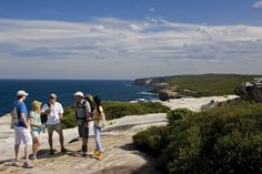 Friends exploring Royal National Park with a Royal Coast Walks tour Walking Holiday, Camping Spots, Palm Beach, Things To Do, Places To Go, Coastal, National Parks, Hiking, Australia
