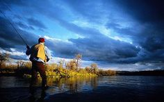 A fly fishing fan tries his hand in Bighorn River, Montana - Fishing holidays: Casting around for a perfect holiday in Montana, USA