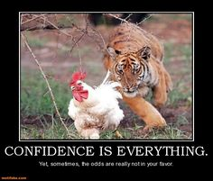 Confidence-Is-Everything-Funny-Chicken-Meme-Picture-For-Whatsapp.jpg (640×546)