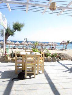 paradise beach// mykonos, greece