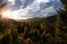 serbia mountain | Zlatibor Mountain, Serbia | Photography