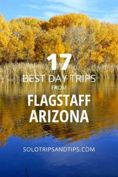 17 BEST day trips from Flagstaff Arizona. Add this to your USA road trip bucket list! Grand Canyon Sedona Antelope Canyon Horseshoe Bend Winslow Navajo Bridge Petrified Forest Prescott Cottonwood Sunset Crater visit ancient ruins of the Sinagua Flagstaff Arizona, Arizona Usa, Road Trip Essentials, Road Trip Hacks, Arizona Day Trips, Travel Usa, Travel Tips, Solo Travel, Travel Ideas