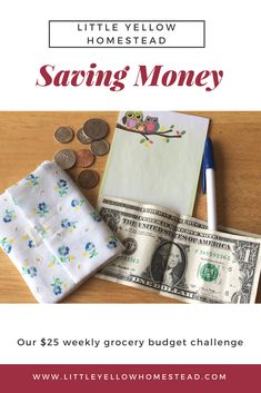 Saving money Make Money From Home, How To Make Money, Money Saving Tips, Managing Money, Create A Budget, Frugal Living, Homesteading, Budgeting, Personal Finance