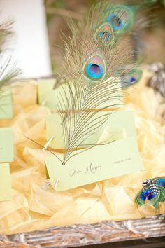 Peacock escort cards  |  meghan wiesman photography