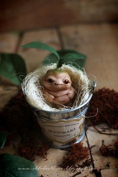 Mandrake ooak art doll. by Eldodoalbino on Etsy