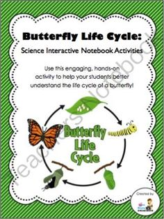 homeschool life science on pinterest life cycles life science and third grade. Black Bedroom Furniture Sets. Home Design Ideas