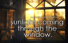 littlereasonstosmile: sunlight coming through the window. - especially when the brightly colored autumn leaves color everything!