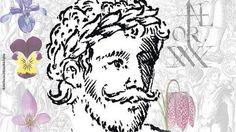 Una revista inglesa anuncia el enésimo retrato «verdadero» de Shakespeare