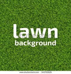 Green grass lawn background. Realistic green grass background. Beautiful fresh lawn grass texture. Green turf texture. Vector illustration for your design.